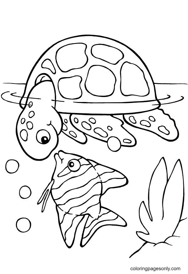 Turtle with Fish Coloring Page