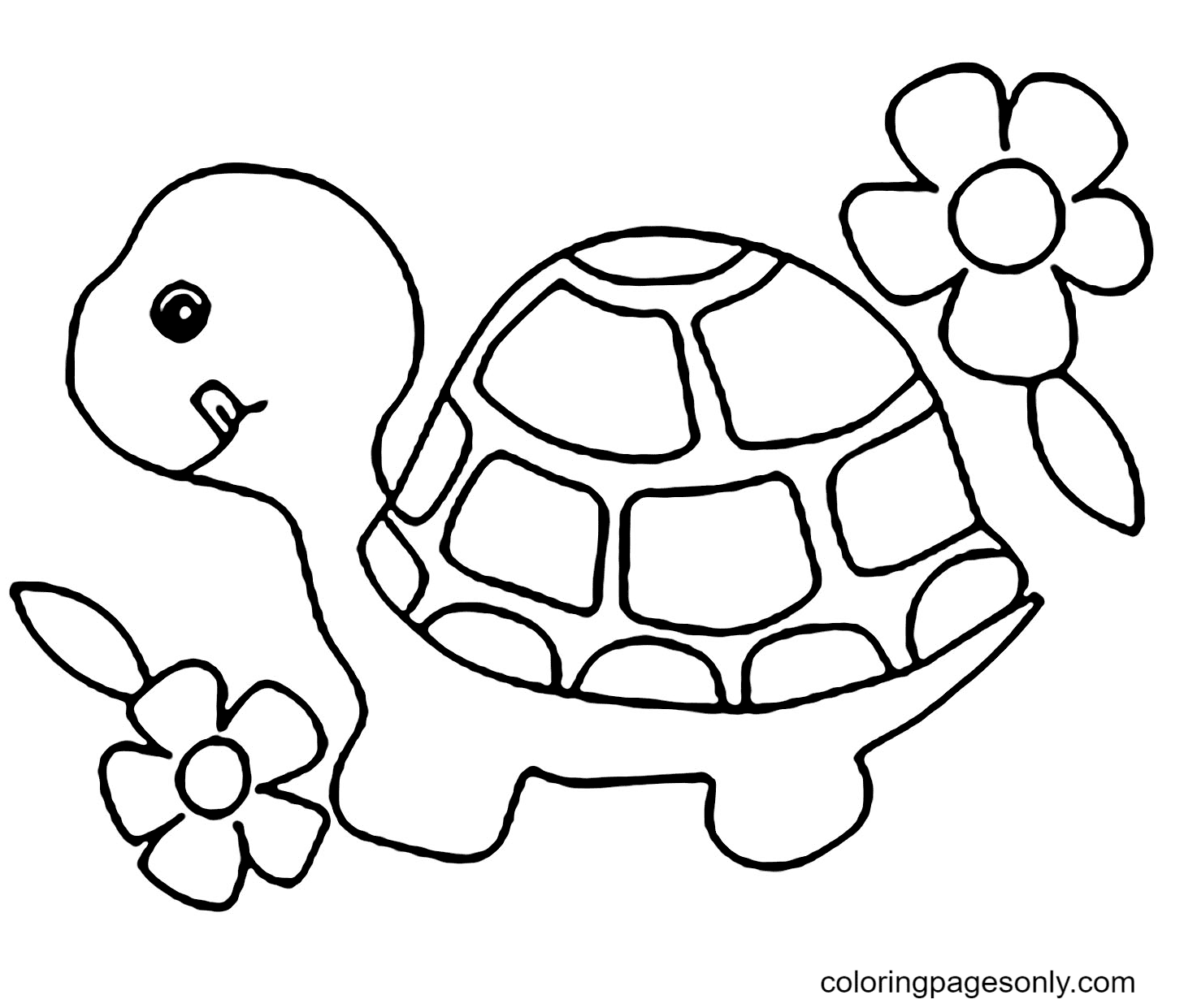 Turtle with Flowers Coloring Page
