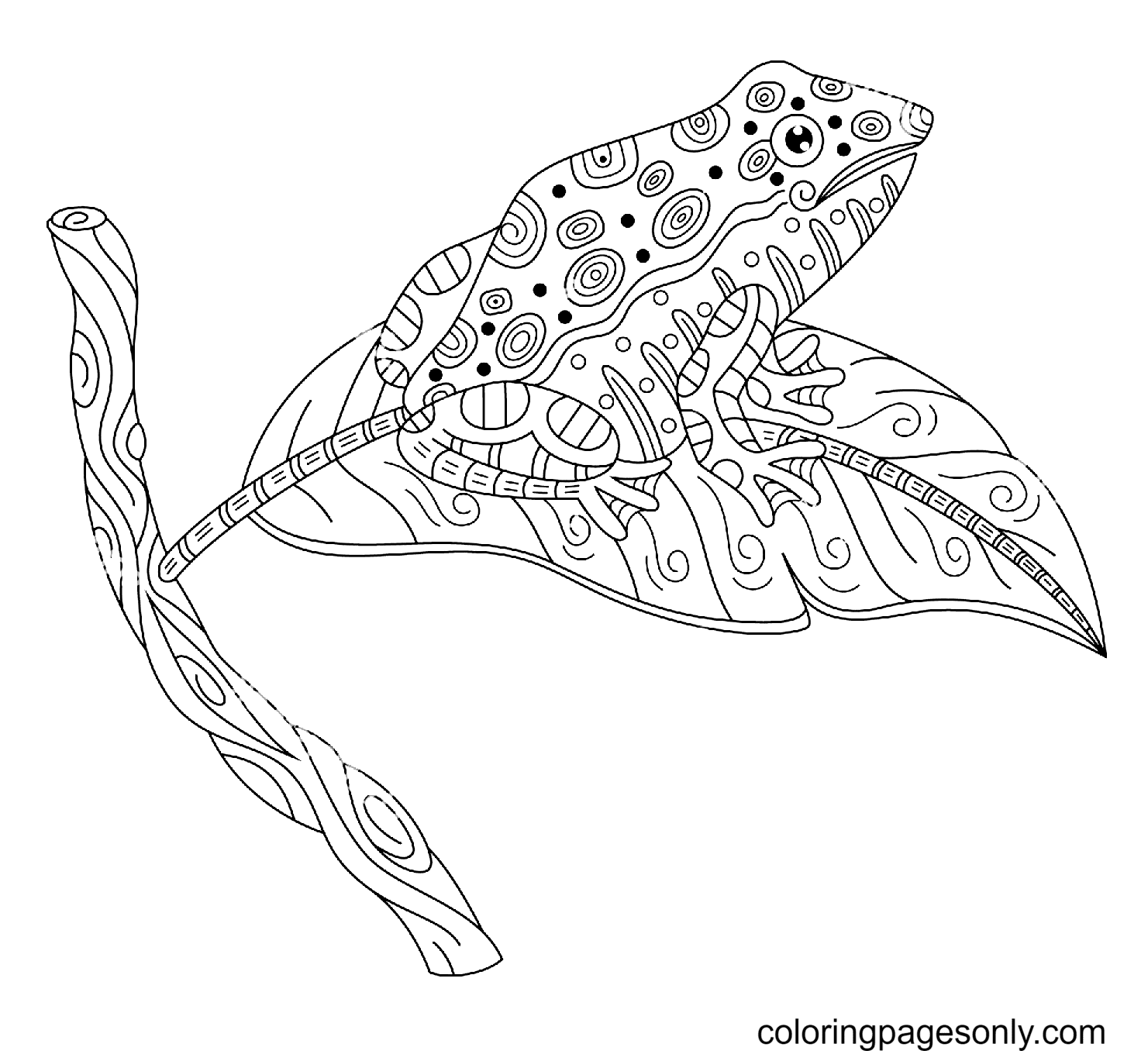 Zentangle Frog Sitting On a Tree Leaf Coloring Page