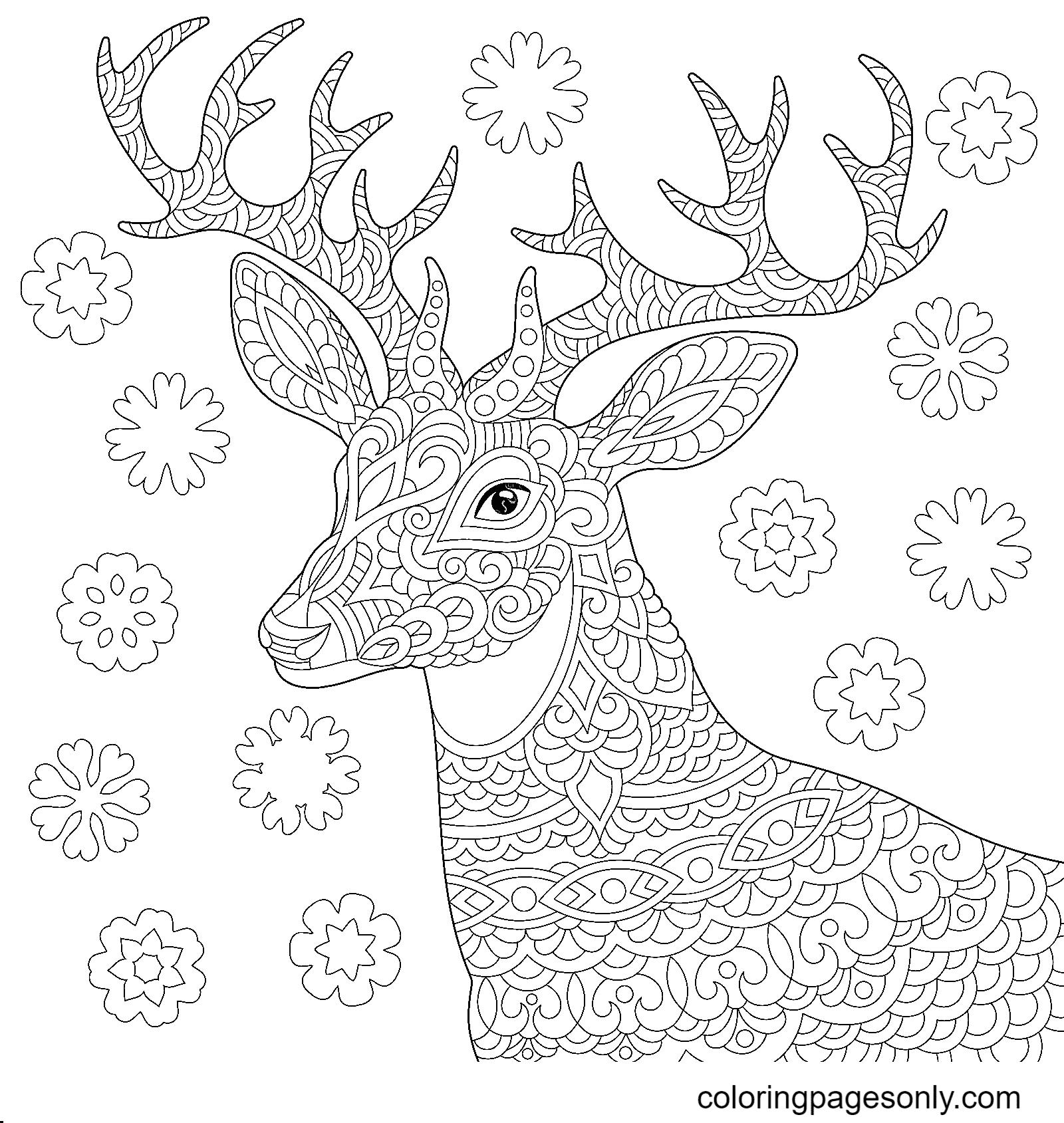 Zentangle Reindeer Coloring Page